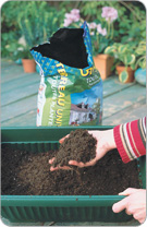 Fill the flower box up to 3/4 with draining soil.